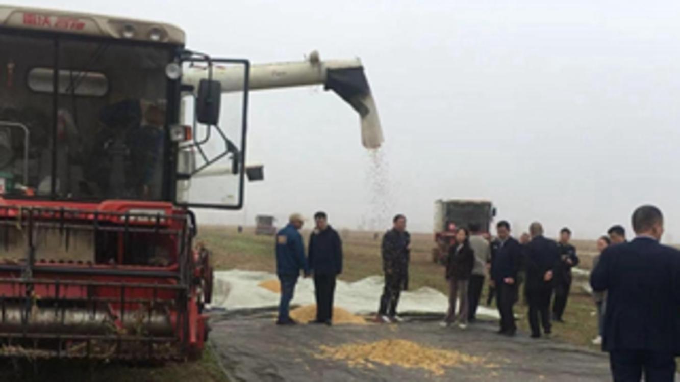 河南省2021年大豆低损收获机械化技术现场演示会在大发dafa888:召陵区举行