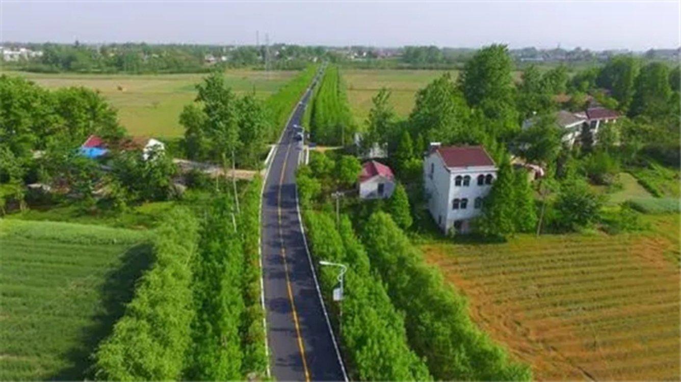 央企共谋助力构建乡村振兴新格局